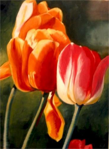 1big-tulips